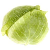 Cabbage Green 1EA product image