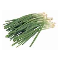 Onions Green Scallions 1 Bunch product image