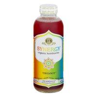 GT'S Synergy Organic Kombucha Trilogy 16oz BTL product image