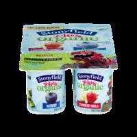 Stonyfield YoKids Blueberry & Strawberry Vanilla 4oz EA 6PK product image