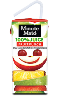 Minute Maid 100% Juice Fruit Punch 8PK of 6oz Boxes product image