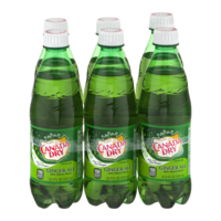 Canada Dry Ginger Ale 6PK of 16.9oz Bottles product image