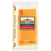 Land O Lakes Sliced American Yellow Cheese Deli Thin 10CT 8oz PKG product image
