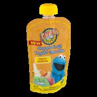 Earth's Best Organic Fruit Yogurt Smoothie Peach Banana 4.2oz Pouch product image