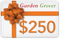 Gift Certificate $250 product image
