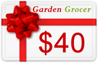 Gift Certificate $40 product image