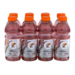 Gatorade Frost Rain Berry 8PK of 20oz BTLS